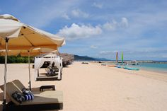 Misibis Bay Rest Days, Beach Fun, Exotic Pets, Neverland, More Fun, Philippines, Places To Visit, Vacation, Travel