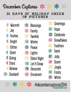 It is no secret that this is my favorite time of year - and every single year it passes in a flash. A friend of mine asked me if I planned on doing a photo a day challenge in December. I had never ...