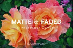 Matte & Faded Tone Photoshop Actions by  @Graphicsauthor