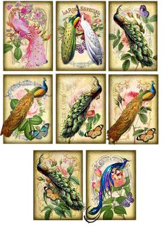 Vintage inspired peacock roses cards tags ATC altered art set of 8 | Home & Garden, Greeting Cards & Party Supply, Greeting Cards & Invitations | eBay!