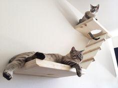 Doppelstock Katze Regale von CatastrophiCreations auf Etsy