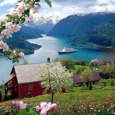 Visited in 2005 - Beautiful Norway Blossom. and Norway fjord. Places Around The World, The Places Youll Go, Places To See, Around The Worlds, Vacation Places, Dream Vacations, Places To Travel, Travel Destinations, Beautiful Norway