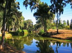 Travel is a great respite from our stressful day-to-day lives, but it doesn't come without its own set of hassles. This can be especially taxing when you're in an unfamiliar city. Take a break from the logistical hullabaloo by stepping into Ganei Yehoshua (also known as the Yarkon Park)! Breathe in the fresh air while enjoying the lush scenery... Serenity in the heart of the city! (Photo: alexk2312 on Flickr) https://exploreisrael.com