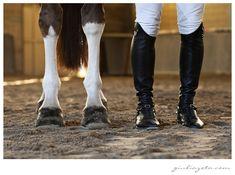 Horse & Rider Photo