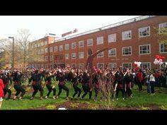Delta Sigma Theta - ALPHA Chapter Spring 2013 CENTENNIAL LINE