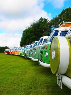 Line 'em up Volkswagen of all all colors... VW BUS #vwbus | pinned by @wfpblogs www.wfpblogs.com