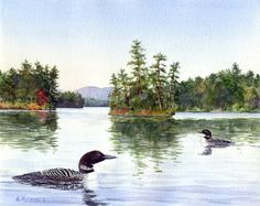 Loons Afternoon  by Maureen McCarthy