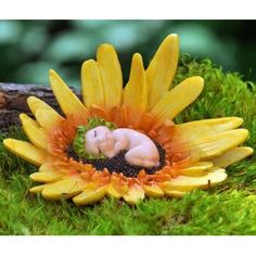 Gerbera Daisy Flower Baby. www.teeliesfairygarden.com . . . This lovable little fairy baby rests on the beautiful Gerbera Daisy flower. They're a wonderful and vibrant addition to your magical flower kingdom. #flowerfairy