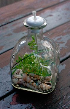 Patron Bottle Oil Lamp - Cool Green, just add lamp oil!  http://seasidesouvenirs.com/oil-lamps.php