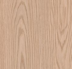 312026 Northern Red Oak