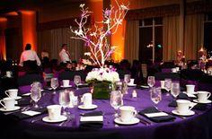 centre-table-violet-blanc
