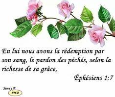 Psaumes-probervios  et des citations bibliques: Éphésiens 1,7
