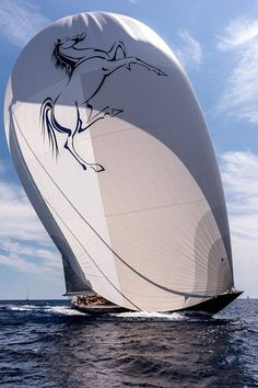 I'm getting a boat.... just so I can get this sail