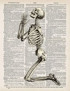 skeleton print on dictionary page