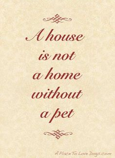 A house is not a home without a pet.
