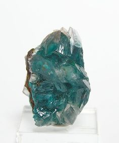 Blue Green Rare Rosasite Botryoidal Crystals in by FenderMinerals