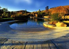 Stunning natural pool in San Francisco that brings the tropical beach into your backyard by Bradanini & Associates