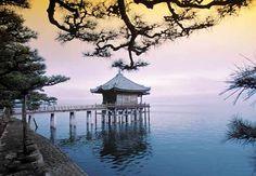 YOGA CRECIMIENTO ESPIRITUAL: Locos y devotos - Zen - Osho