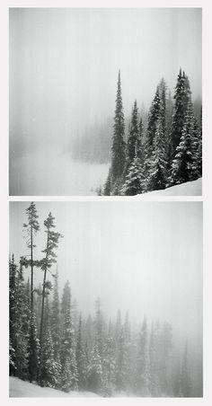 Frozen lands➸Luke Gram