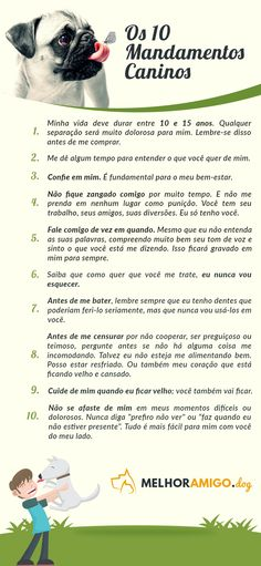 10 mandamentos caninos. #dog #cachorro #pet Love Pet, Rottweiler, Pet Shop, Cute Dogs, Animals And Pets, Dogs And Puppies, Pugs, Beware Of Dog, Pet Day