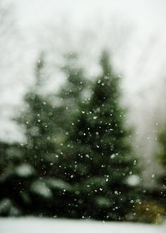 I want to eventually take a picture of a snow fall like this.  Every time I try, it just looks like I'm taking a picture of trees or something.  You can't see the snow flakes.  Oh well....I'll get there.