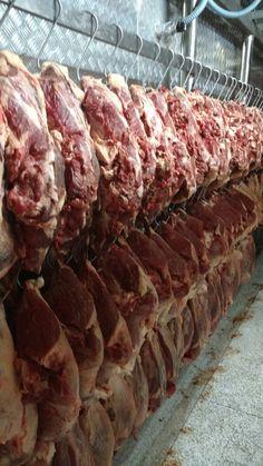 Arrumação perfeita de carne Desossada no frigorífico Big Boi.