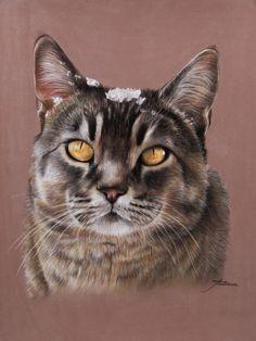 Animal Pastels | Pastels animaliers et équins - Photographies - Peintures Art Pastel, Pastel Drawing, Cat Drawing, Pastel Portraits, Pet Portraits, Pastel Crayons, Image Chat, Watercolor Cat, Color Pencil Art