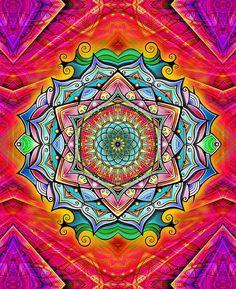 La Práctica de la Meditación con Mandalas |