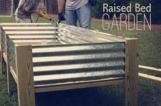 Raised garden beds are definitely on my list in our next garden when we have more space. I will combined our raised bed garden with our bunny garden and have shade/overhead protection for our buns and protect the plants from our nibblers!