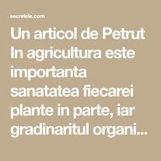Un articol de Petrut In agricultura este importanta sanatatea fiecarei plante in parte, iar gradinaritul organic se preocupa atat de sanatatea plantelor, cat si de cresterea ei in absenta pesticidelor si a fertilizatorilor chimici periculosi. In continuare iti vom dezvalui o serie de trucuri pentru cresterea sanatoasa a plantelor intr-un mod perfect natural! Desi unele … Math Equations, Sun, Culture