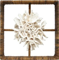 Shadow Box Cake Coral: Beach Decor, Coastal Home Decor, Nautical Decor, Tropical Island Decor & Beach Cottage Furnishings