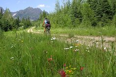 Cycle Divide Montana | Guided Tours | Adventure Cycling Association