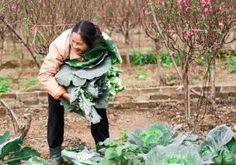 Zero gradi al sole #storie #caporalato #lavorofemminile #agricoltura #sfruttamento #lavoronero http://www.elenaferro.it/zero-gradi-al-sole/