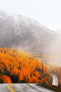 Rocky Mountain Autumn, Colorado. The most stunning drive. I love it.