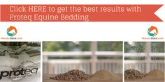 Try Proteq Equine bedding Today; $5 discount on your first order (valid until 30 April 2015)