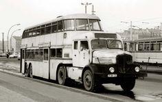 WERDAUER Trucks Only, Big Trucks, Road Transport, Public Transport, Bus City, Rv Bus, Vans Top, S Bahn, Bus Coach