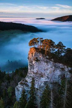 Foggy overlook. (possibly Oregon.)