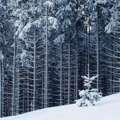 winter in Beskidy Mountains, Poland.