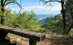Wandern | Wachau Inside Berg, Austria, Fitness, Plants, Hiking, Woodland Forest, Health, Tips, Plant