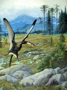 Darwinopterus linglongtaensis; Middle Jurassic, 161–160.5 Ma; Rhamphorhynchoid; Described by Wang et al., 2010; Artwork by Antresoll