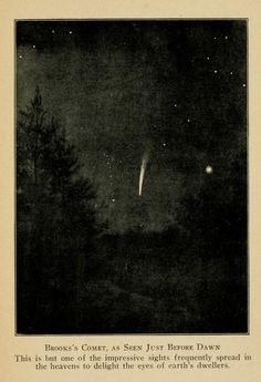 Brooks' Comet (Astronomy and the Bible by Lucas Albert Reed, Constellations, Vintage Space, Aesthetic Art, Wall Collage, Aesthetic Wallpapers, Cosmos, Art Inspo, Astrology, Illustrations