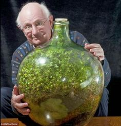 This Garden In A Bottle Has Been Thriving since 1960: Sealed in its own ecosystem and watered just once in 53 years ~ A Peaceful Warrior