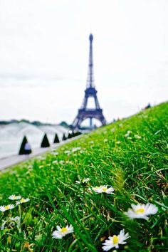 unusual places to see the eiffel tower from in Paris, France: Quirky and Unique Ideas!