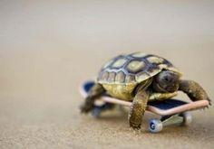 body boarding...