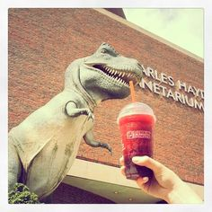 It's a hot one in Boston! We're keepin' cool with a Dunkin' Donuts Berry Blast Coolatta and a visit to the Museum of Science!