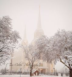 Brigham City Temple winter scene Christmas manger