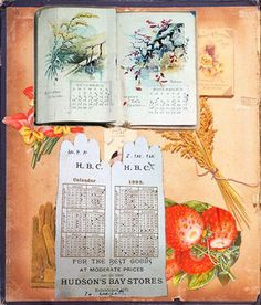 This is one of the pages from the scrapbook of Lucy Maud Montgomery.  The small calendar with the sprig of something behind it.  And then the glove shaped calendar with a picture of a glove and some fruit . . . well, I just love this.  Really do.