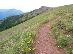 Mt. Townsend day hike