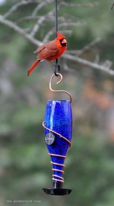 10 Creative DIY Bird Feeders A great round-up on DIY Bird Feeder projects from around the web with lots of Tutorials! Including this wonderful diy glass bottle bird feeder from the garden roof coop… Homemade Bird Feeders, Diy Bird Feeder, Blue Bottle, Bottle Art, Diy Bottle, Water Bottle, Bud Light, Diy Décoration, Diy Crafts
