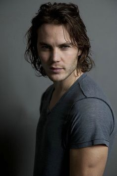 taylor kitsch love of my life